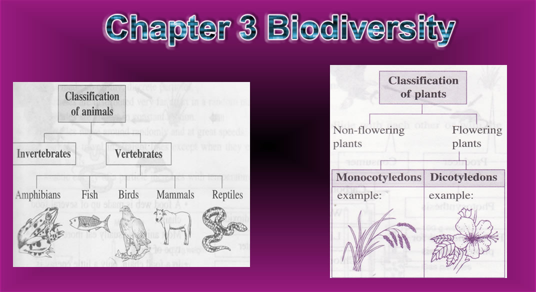 blog sains pbs tingkatan 3 science form 3 chapter 2 share the